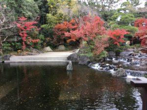 神嶽山神苑の池